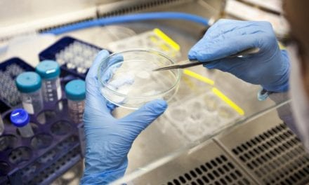 Ebola vaccine from Merck takes step towards US approval|BioPharma Dive