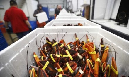 China deal might not bail out lobster industry this New Year | MarketBeat