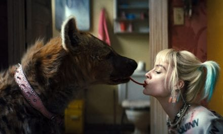5 reasons hyenas like Harley Quinn's 'Bruce' are amazing | Live Science
