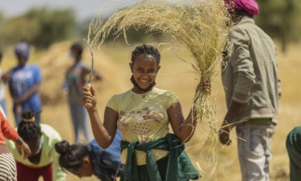 Youth in Ethiopia volunteer to save local farmers' crops during locust crisis | Compassion Canada