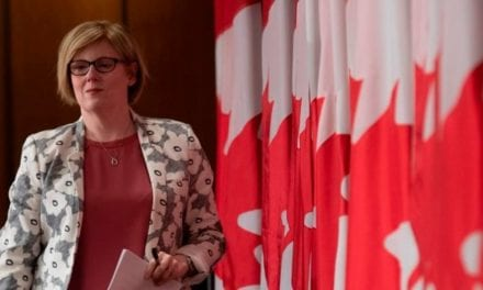 Canadians will lose jobs amid COVID shutdowns, but may rebound 'quickly': employment minister | MSN Canada – Buzzing Startups